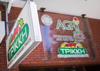 trikki-eas-a-2016-27